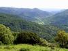Manchas de vegetación mediterránea y cauce del Jándula. Autor: Ricardo Benítez Lomas