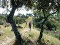 Senda entre matorral mediterráneo