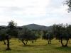 En el corazón de Sierra Morena